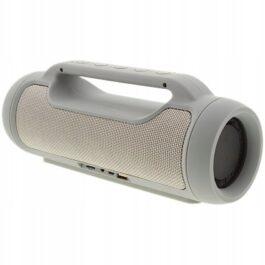 Przenośny głośnik Bluetooth Audiologic